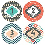 Lucy Darling Baby Monthly Stickers - Gender Neutral - Tribal Print - Months 1-12