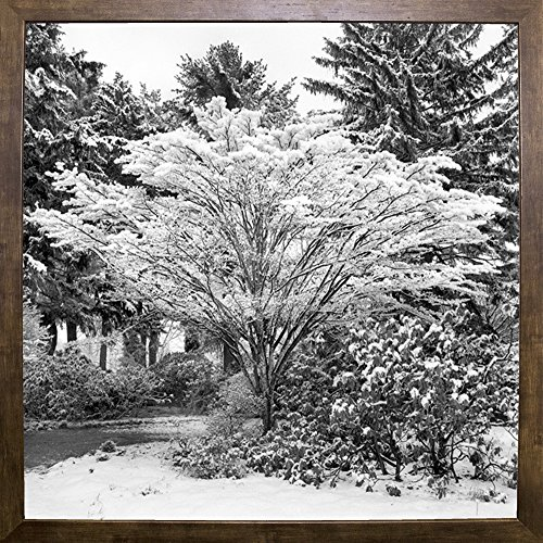 Snow Covered Fence - Frame USA Snow Covered Fan-HARTRE75415 Print 20
