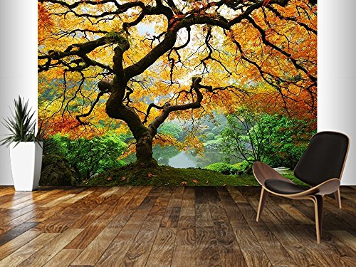 Startonight Mural Wall Art Photo Decor Maple In Garden Large 8 Feet 4 Inch  By 12 Feet Wall Mural For Living Room Or Bedroom