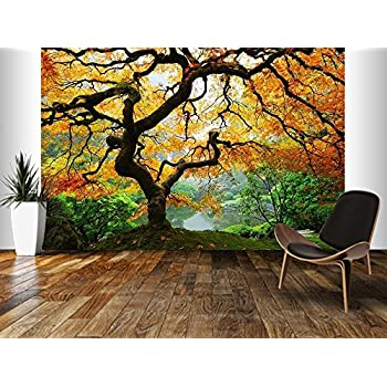 Startonight Mural Wall Art Photo Decor Maple In Garden Large 8 Feet 4 Inch  By Part 56
