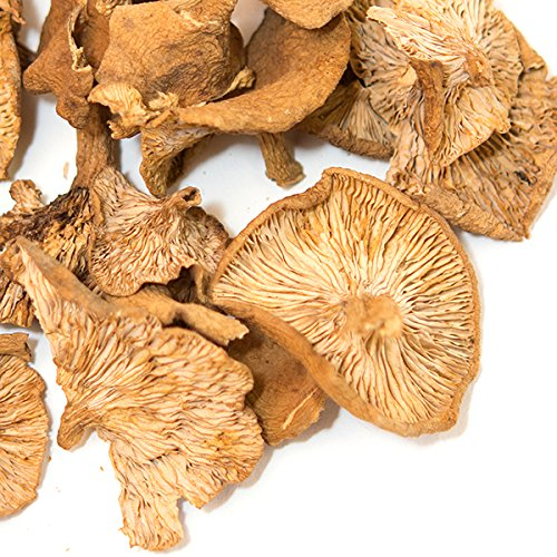 Spice Jungle Candy Cap Mushrooms - 4 oz.