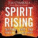 Spirit Rising: Tapping into the Power of the Holy Spirit Hörbuch von Jim Cymbala, Jennifer Schuchmnan Gesprochen von: Jim Cymbala