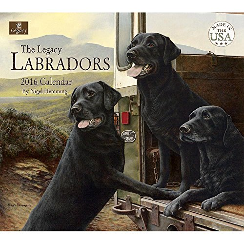 Labradors Wall Calendar by Legacy Publishing - Buy Online in