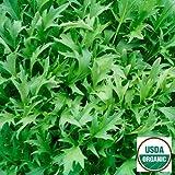 Organic Mizuna Asian Greens - 500 Seeds
