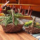EXDJ Creative hand held blue flowerpot pure handmade straw cane rattan flower basket Home decoration Products,17x6cm