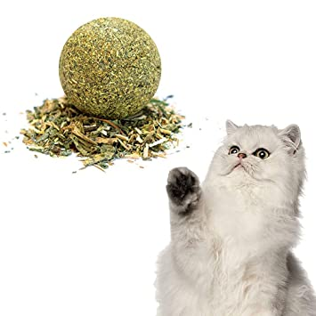 FOONEE Pelota de Gato para Gatos de Natural Catnip Toys Molar Clean Grind Dientes Verdes 1 Paquete: Amazon.es: Hogar