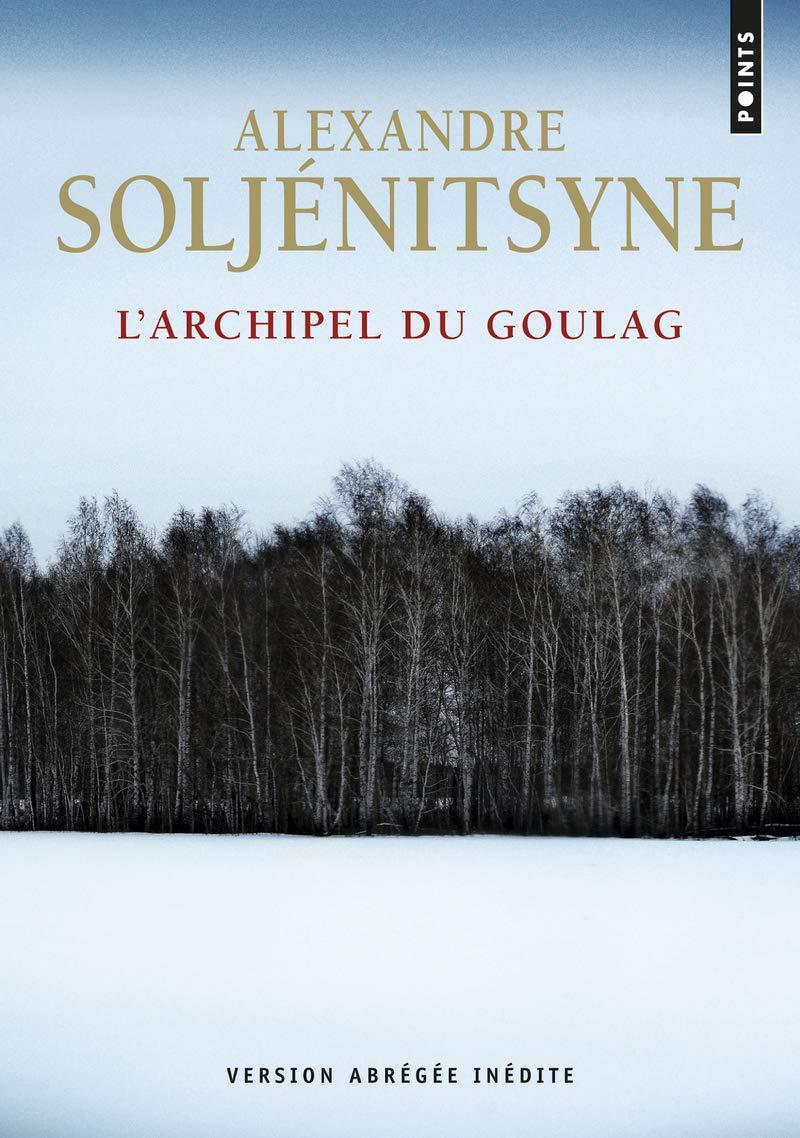 ARCHIPEL DU GOULAG (L'): SOLJENITSYNE, ALEKSANDR ISAEV: 9782757843260:  Books - Amazon.ca