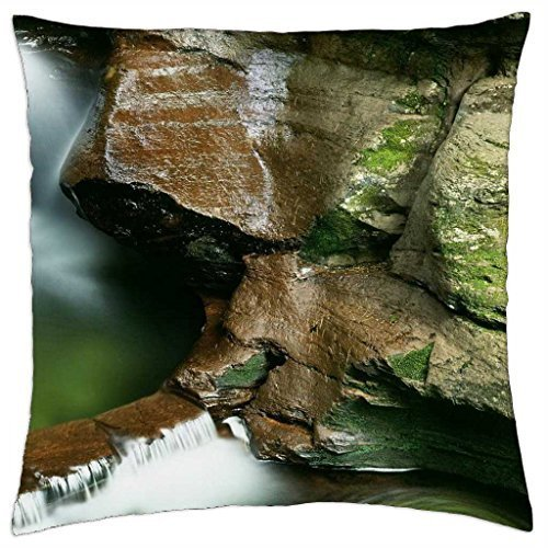 water pool in ricketts glen state park in pa. - Throw Pillow Cover Case (16