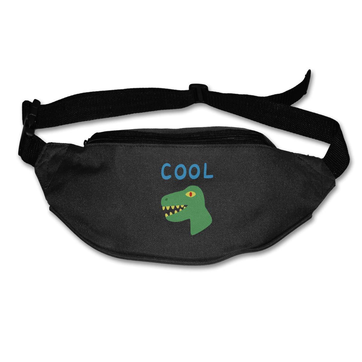 Cool Dinosaur Sport Waist Packs Fanny Pack Adjustable For Travel