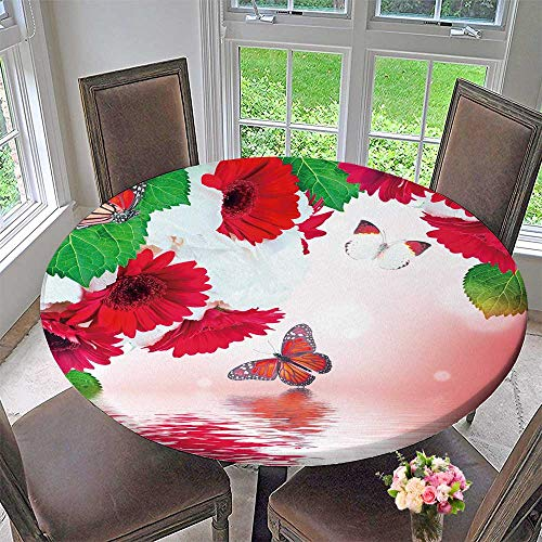 PINAFORE HOME Round Table Tablecloth Multi Colored Gerbera Daisies and Butterfly on a White Background for Wedding Restaurant Party 43.5