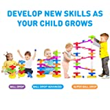 Ball Drop Educational Toy with Bridge - Advanced