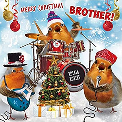 Merry Christmas Brother.Rockin Robins Merry Christmas Brother Christmas Card 3d Goggly Moving Eyes