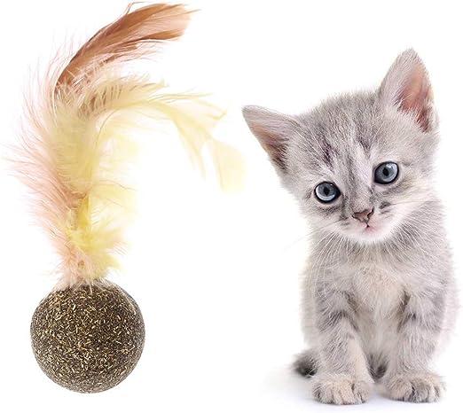yanhonin juguete para gato, bola de hierba de gato, Catnip Juguete gatos, gato limpieza de los dientes Natural comida, juguete pluma para gato interactiva: Amazon.es: Productos para mascotas