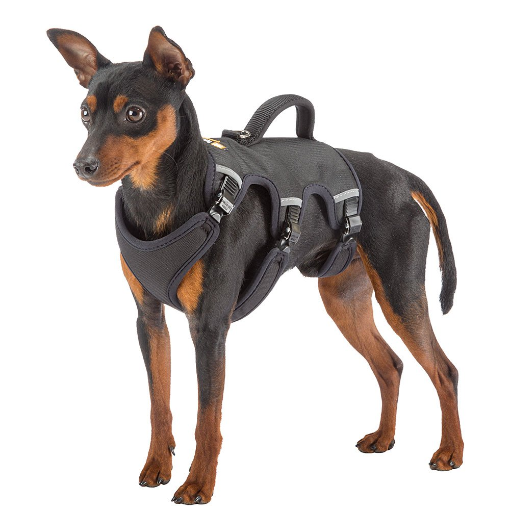 SMALL Ferplast ERGOTREKKING P SMALL Ergonomic harness for dogs A:Black