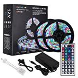 #3: Richsing LED Strip Lights 32.8ft Waterproof Flexible Rope Lights RGB SMD2835 600LEDs 2-Pack With 12V Power Adapter 44Key Remote For Home Garden Party Outdoor