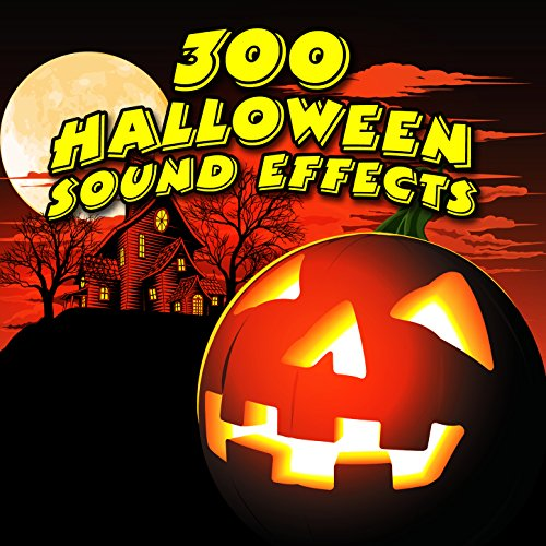 Halloween Forest Sounds (Lost in the Haunted Forest)