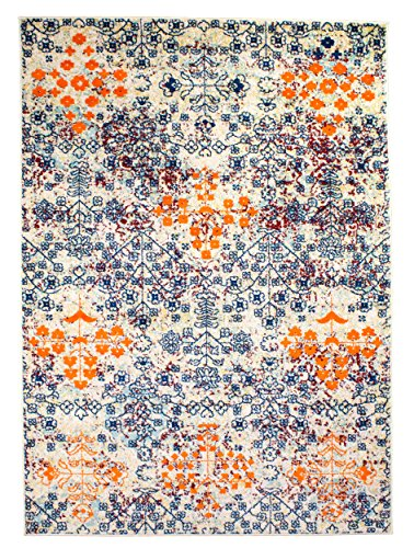 5 x 7 Modern/Traditional Vintage Bohemian Area Rug for Living Rooms and Open Spaces Overdyed Multi