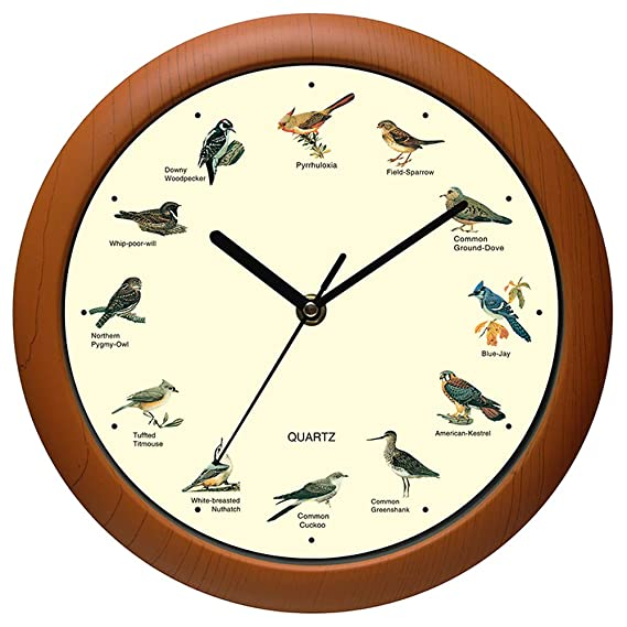 Benail Singing Bird Wall Clock 12 Inch with New Design of the Bird Names and Songs
