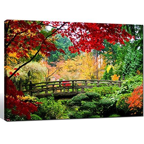 Maple Canvas - 9