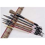 Serie de 7 pinceles de tinta profesional para la pintura y caligrafía de China