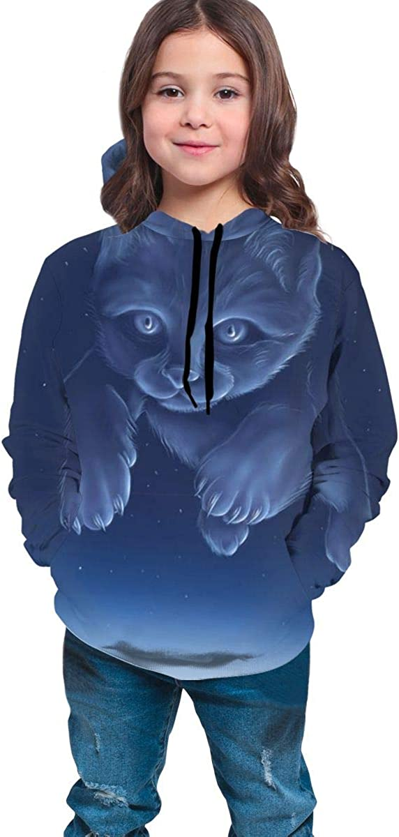 Teen Pullover Hoodies with Pocket Cat Star Gradient Soft Fleece Hooded Sweatshirt for Youth Teens Kids Boys Girls