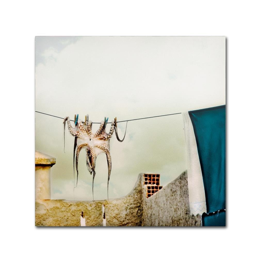 CDM product Trademark Fine Art Tote Hose by Ambra, 35x35 Canvas Wall Art big image