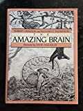 The Amazing Brain, Robert E. Ornstein and Richard F. Thompson, 0395354862