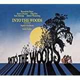 Into The Woods / O.C.R.