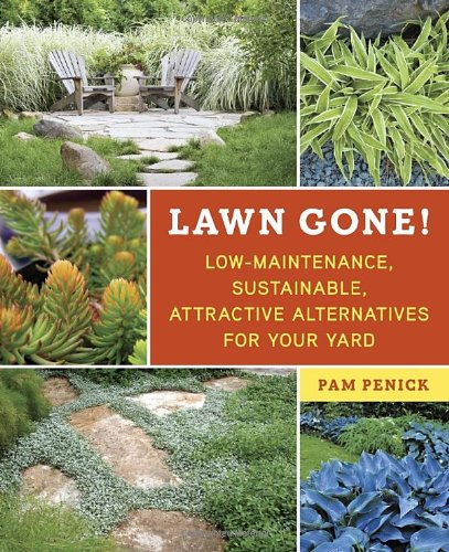 Lawn Gone: Low-Maintenance Alternatives