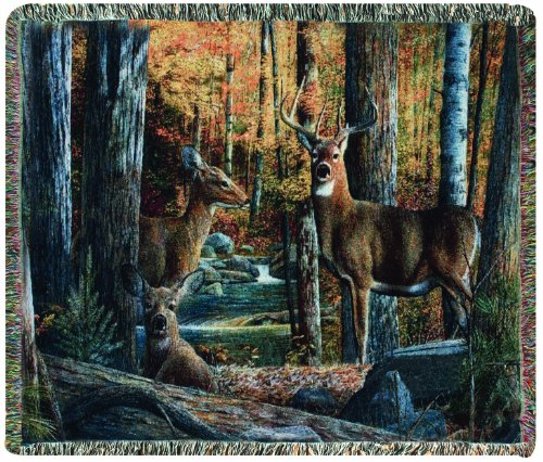 Scene Tapestry Throw - Manual The Lodge Collection 50 x 60-Inch Tapestry Throw, Broken Silence by Kevin Daniel