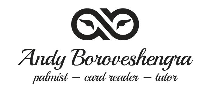 Andy Boroveshengra