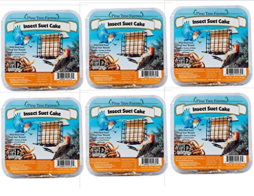 Pine Tree Farms 6 Pack Insect Suet Cakes 12 oz. 1470 Made in USA