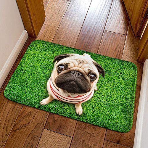 IEnkidu Modern Cute 3D Animal Print Square Shape Non-Slip Home Mat Bathroom Entry Rugs Carpet Mat Puzzle Play ()