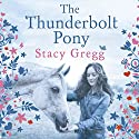 The Thunderbolt Pony Audiobook by Stacy Gregg Narrated by Crystal Arons