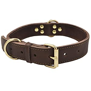 4. Leather dog collar