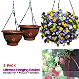 hanging tomato baskets - Ultimate Hanging Baskets - Strawberry, Tomato, Flower, and Herb Outdoor Planters - Use Garden Pots For Growing Plants Outside On A Deck, Fence, or Balcony (2, Mocha)