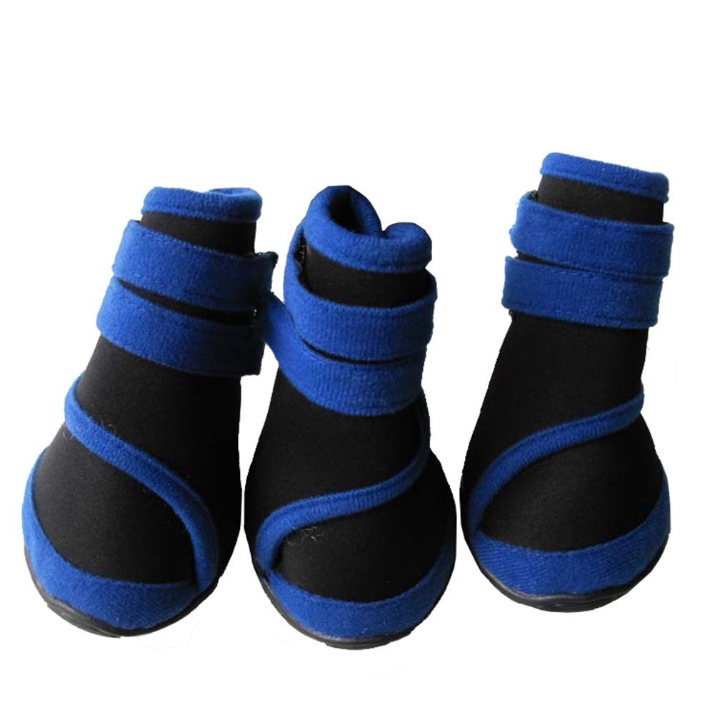 Classic Animals Tendon Waterproof Shoes At The End The Big Dog Blue Size L