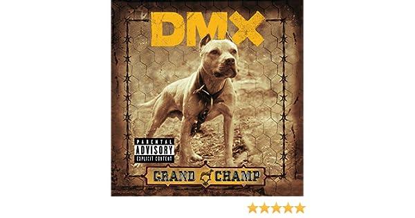 dmx 50 cent shot down lyrics