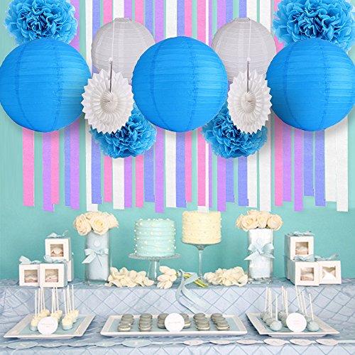 Blue&White Party Decor Background Wall Wedding Theme Tissue Paper Pom Pom Tassel Garland Polka Dot Tissue Poms Paper Garland for Wedding Baby Shower Decoration Bridal Shower Blue First Birthday