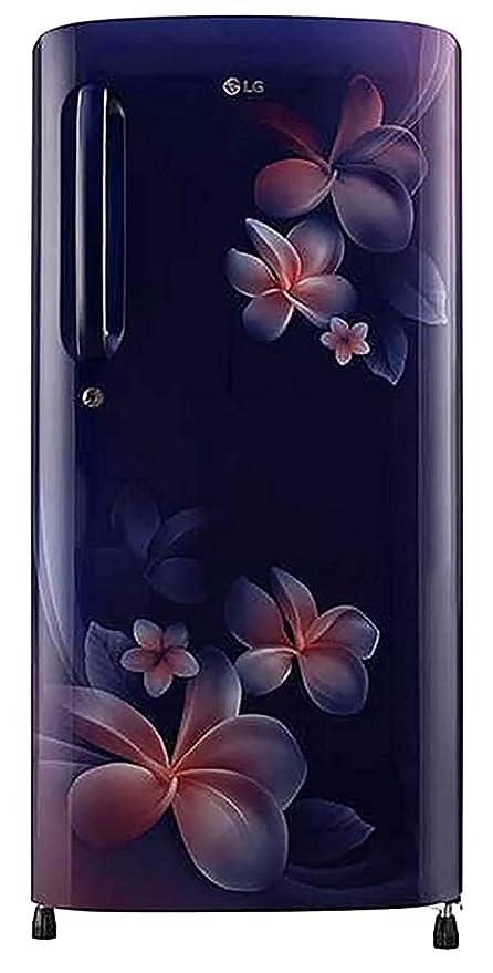 LG 190 L 4 Star Inverter Direct-Cool Single Door Refrigerator (GL-B201ABPY, Blue  Plumeria): Amazon.in: Home & Kitchen