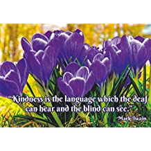 QUOTES01 - KINDNESS IS THE LANGUAGE WHICH THE DEAF CAN HEAR AND THE BLIND CAN SEE - Mark Twain - A Postcard Inspirational Quote OF a Famous Person - .. from Hibiscus Express