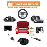220pcs - Car Blade Fuses Assortment Kit, Automotive Fuses - Standard & Mini (2A/ 3A/ 5A/ 7.5A/ 10A/ 15A/ 20A/ 25A/ 30A/ 35A), Car Boat Truck SUV Automotive Replacement Fuses by Riseuvo