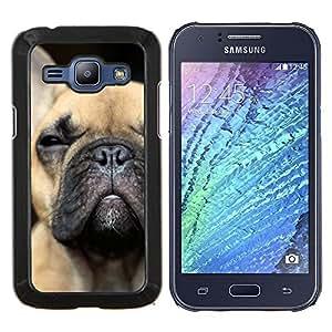 LECELL--Funda protectora / Cubierta / Piel For Samsung Galaxy J1 J100 -- Cachorro de Bulldog francés del perro de Boston Terrier --