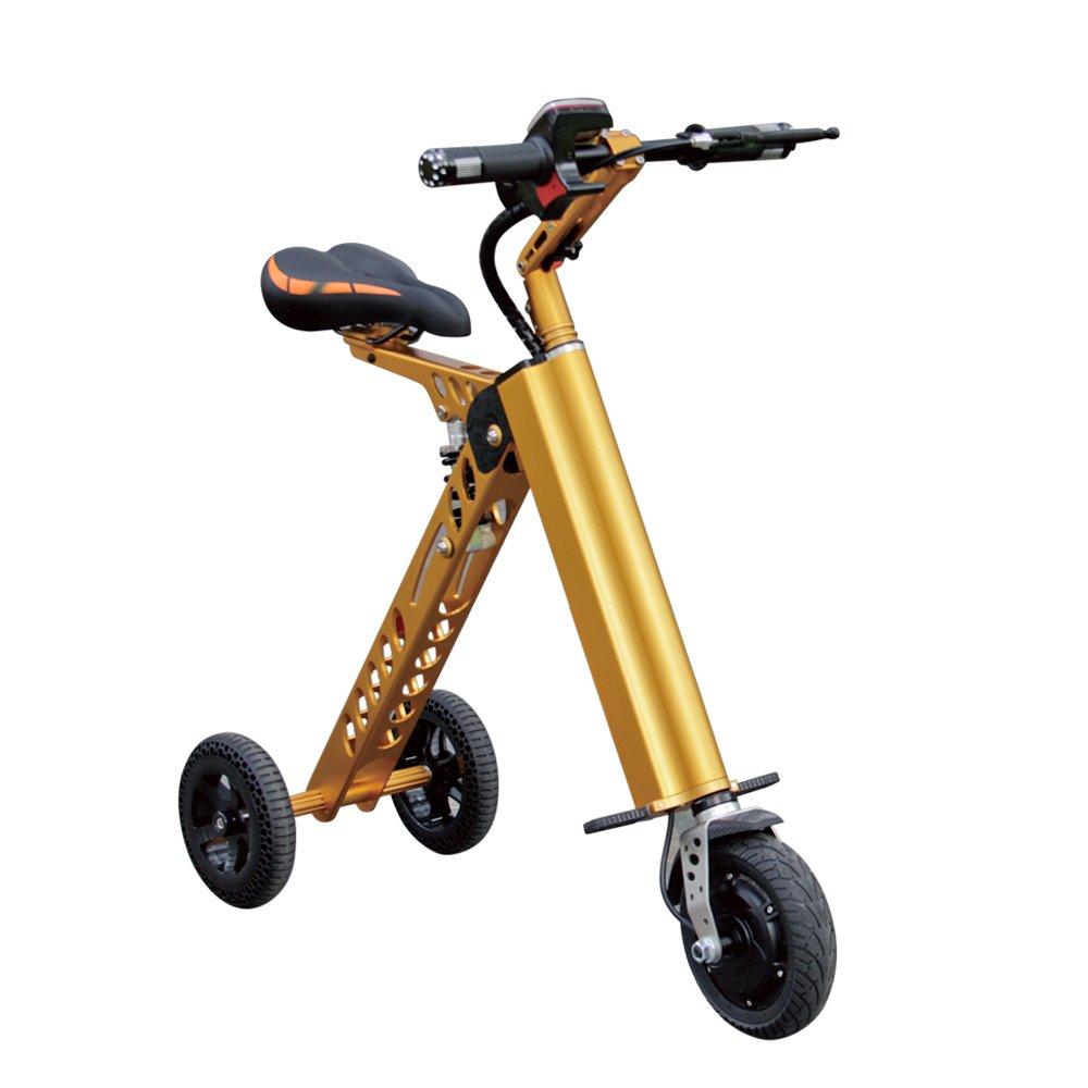 3輪折りたたみ電動自転車 充電式自転車 11KG B0796R9ZKJgold