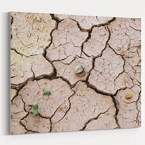 Westlake Art - Soil Clay - 16x20 Canvas Print Wall Art - Canvas Stretched Gallery Wrap Modern Picture Photography Artwork - Ready to Hang 16x20 Inch (F13A-6D139)