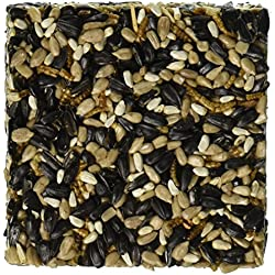 "Happy Hen Treats 6 oz. Square-Mealworm and Seed, 4.25"" by 4.25"" by 1.25"""