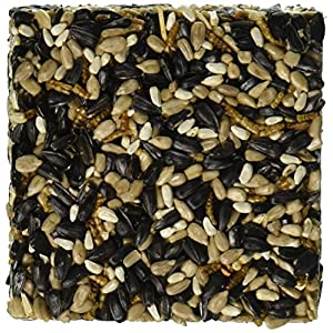 """Happy Hen Treats 6 Oz. Square-Mealworm And Seed, 4.25"""" By 4.25"""" By 1.25"""" 19"""