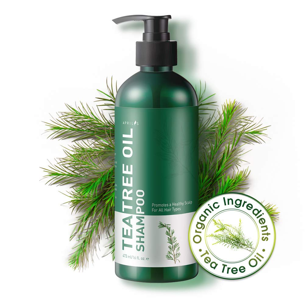 Aprilis Pure Tea Tree Oil Shampoo   Natural and Organic, Anti-dandruff, Anti-fungal & Anti-bacterial Shampoo for Dry, Itchy & Flaky Scalp, Prevents Head Lice, for Men and Women   16 fl. oz.
