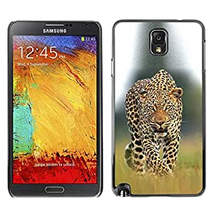PC/Aluminum Funda Carcasa protectora para Samsung Note 3 N9000 N9002 N9005 leopard ocelot big cat ferocious nature / JUSTGO PHONE PROTECTOR
