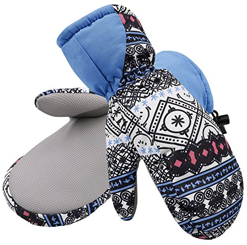 Livingston Women's 3M Thinsulate Insulated Waterproof Winter Snow Mittens, Boho, S/M